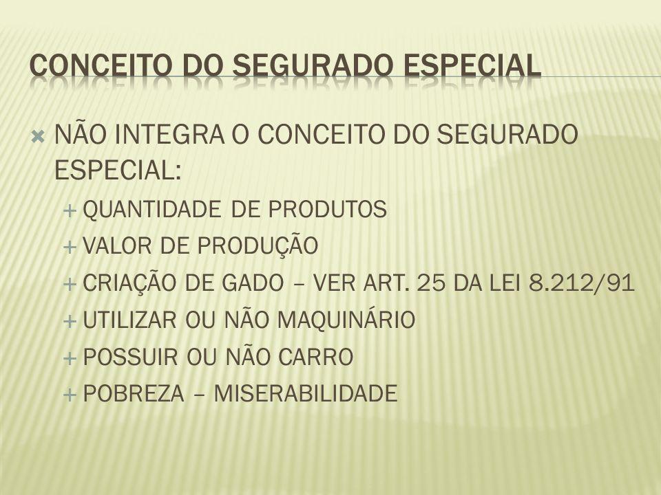CONCEITO DO SEGURADO ESPECIAL