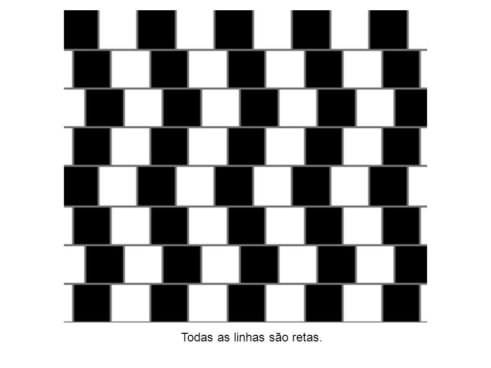 Todas as linhas são retas.