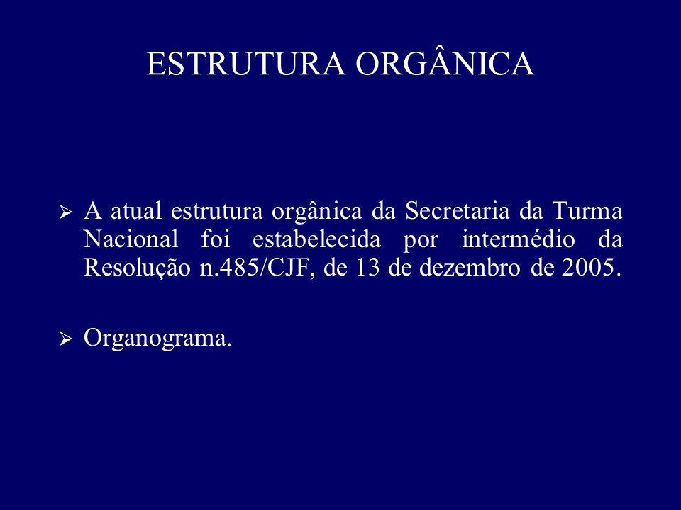 ESTRUTURA ORGÂNICA