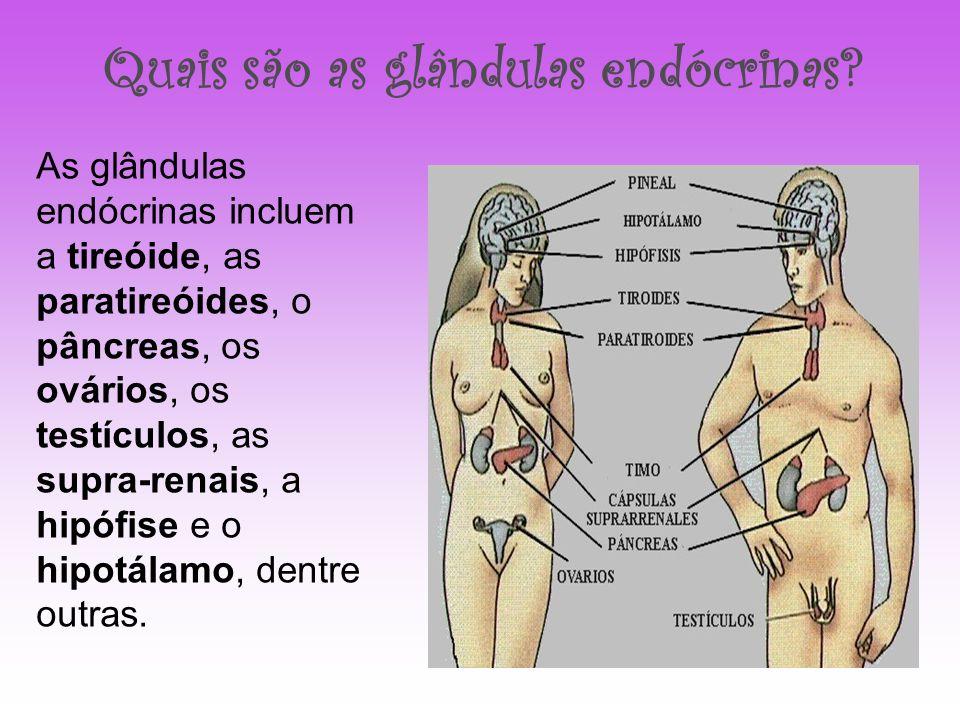 Quais são as glândulas endócrinas