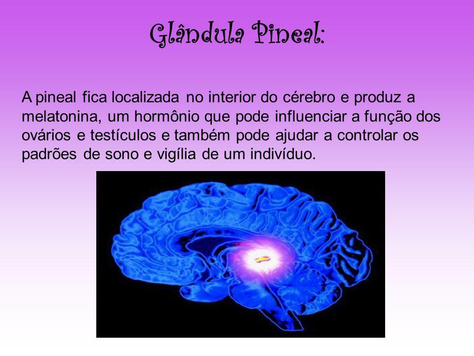 Glândula Pineal: