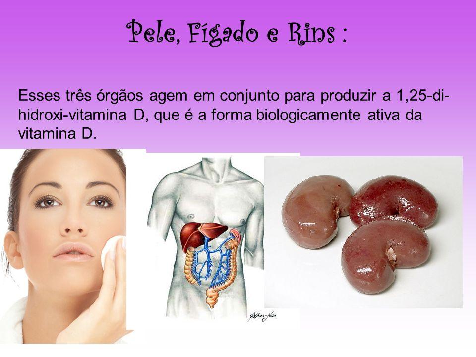 Pele, Fígado e Rins :