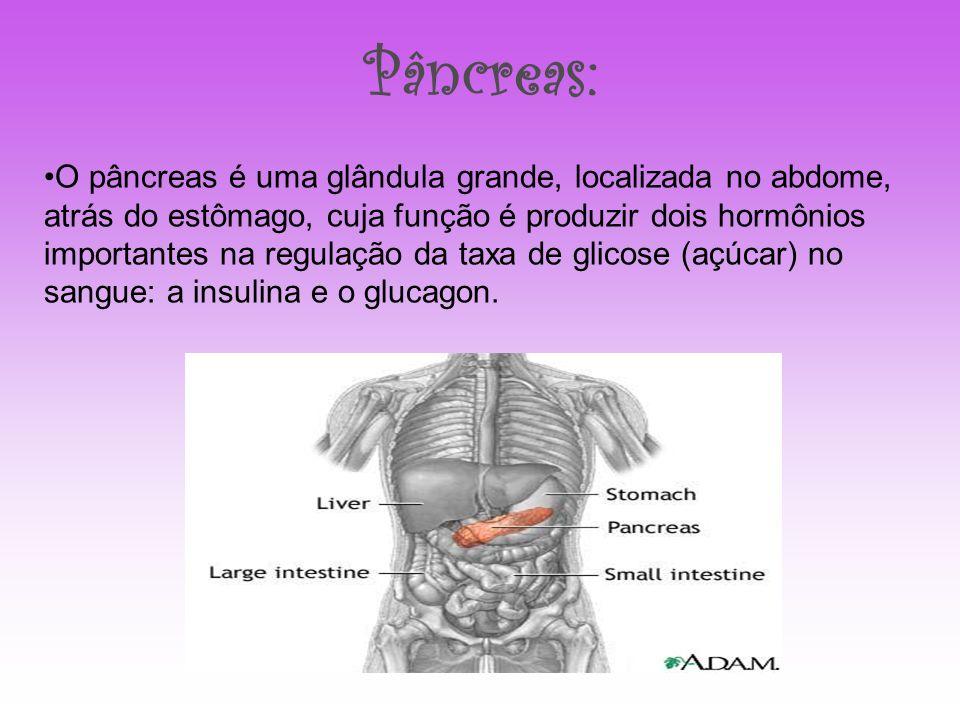 Pâncreas:
