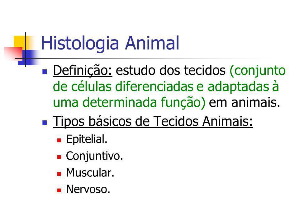 Histologia Animal Definição: estudo dos tecidos (conjunto de células diferenciadas e adaptadas à uma determinada função) em animais.