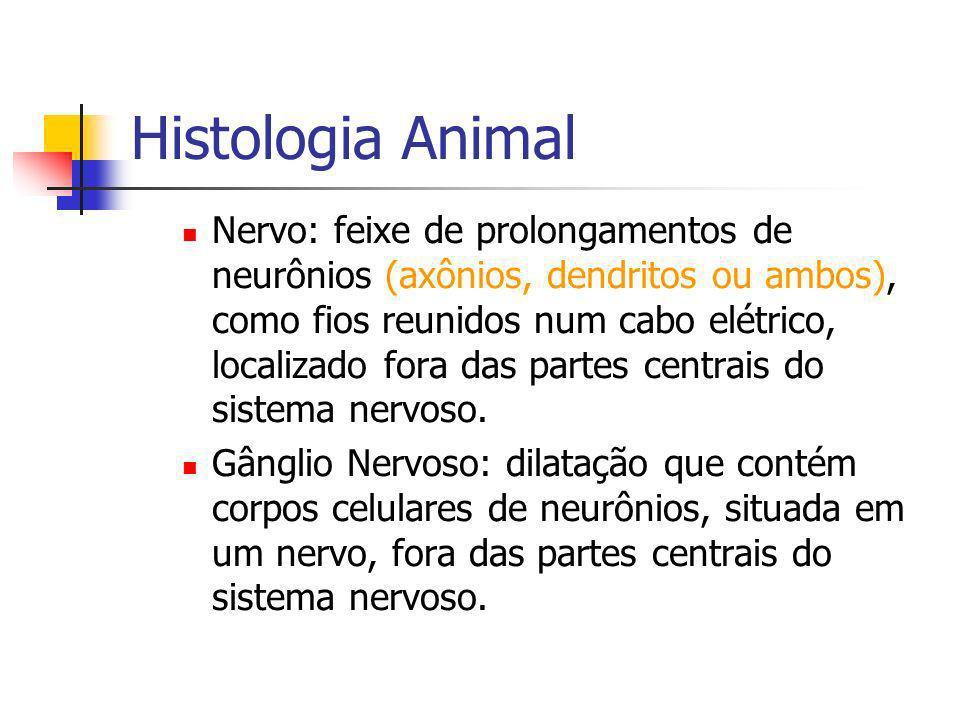 Histologia Animal