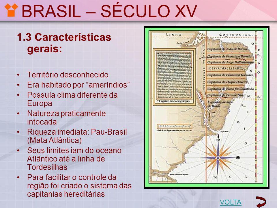 BRASIL – SÉCULO XV 1.3 Características gerais: Território desconhecido