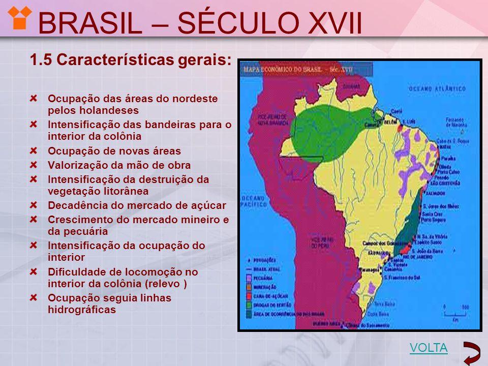 BRASIL – SÉCULO XVII 1.5 Características gerais: VOLTA