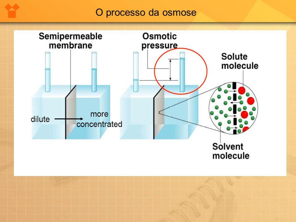 O processo da osmose