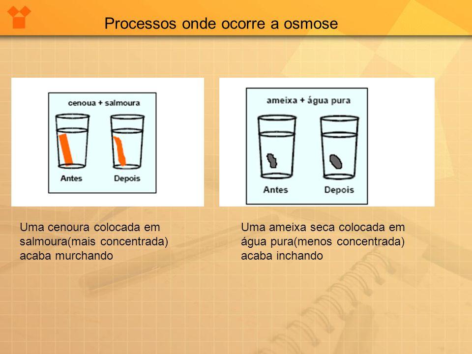 Processos onde ocorre a osmose