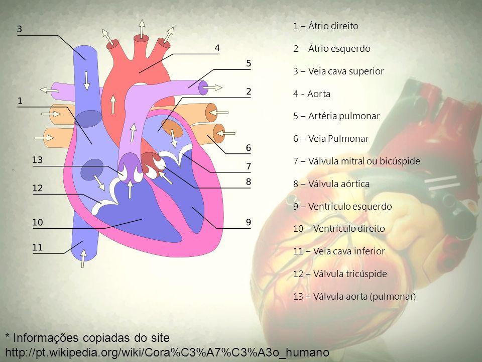 1 – Átrio direito 2 – Átrio esquerdo. 3 – Veia cava superior. 4 - Aorta. 5 – Artéria pulmonar. 6 – Veia Pulmonar.