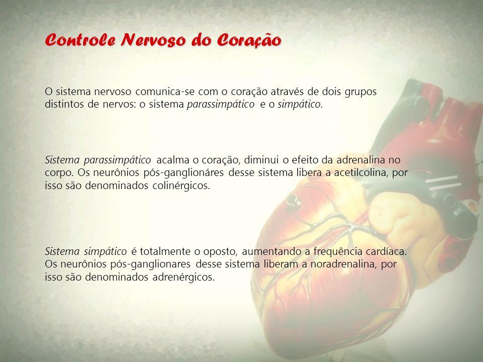 Controle Nervoso do Coração