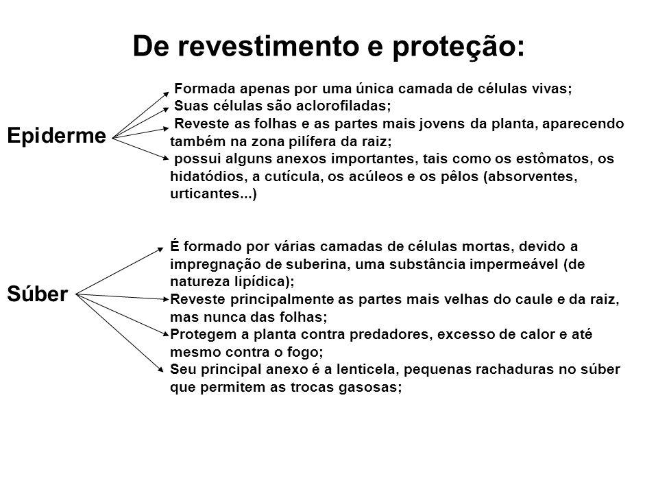 De revestimento e proteção: