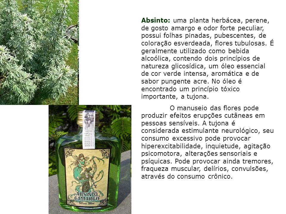 Absinto: uma planta herbácea, perene, de gosto amargo e odor forte peculiar, possui folhas pinadas, pubescentes, de coloração esverdeada, flores tubulosas. É geralmente utilizado como bebida alcoólica, contendo dois princípios de natureza glicosídica, um óleo essencial de cor verde intensa, aromática e de sabor pungente acre. No óleo é encontrado um princípio tóxico importante, a tujona.