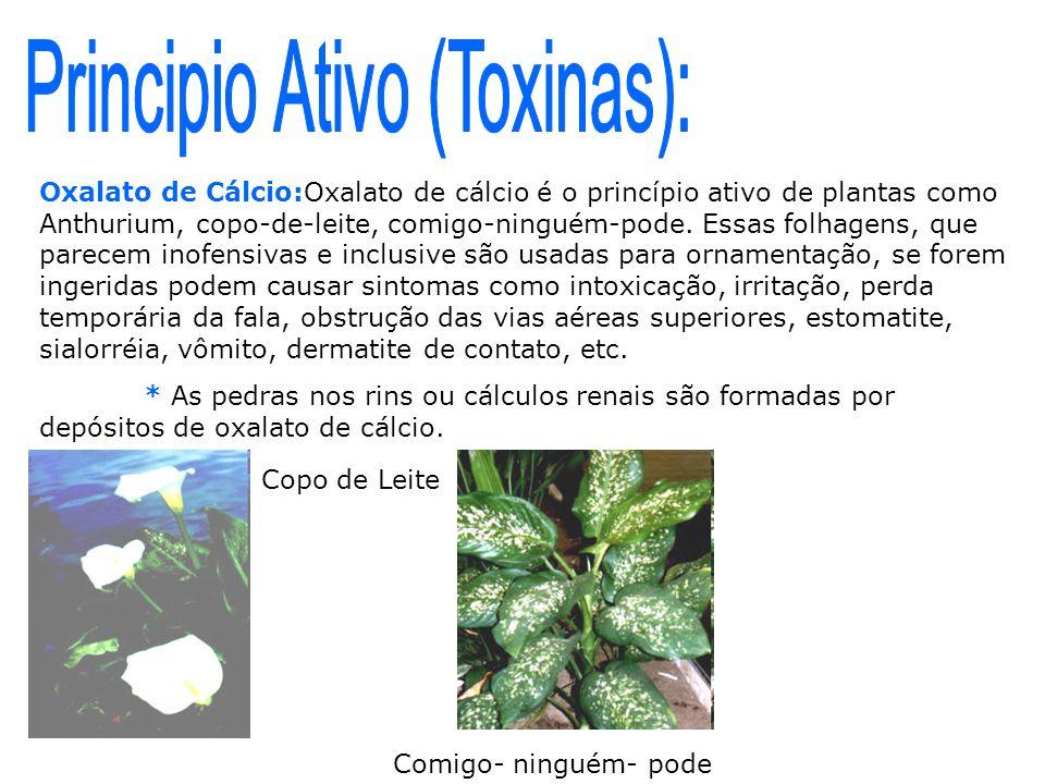 Principio Ativo (Toxinas):