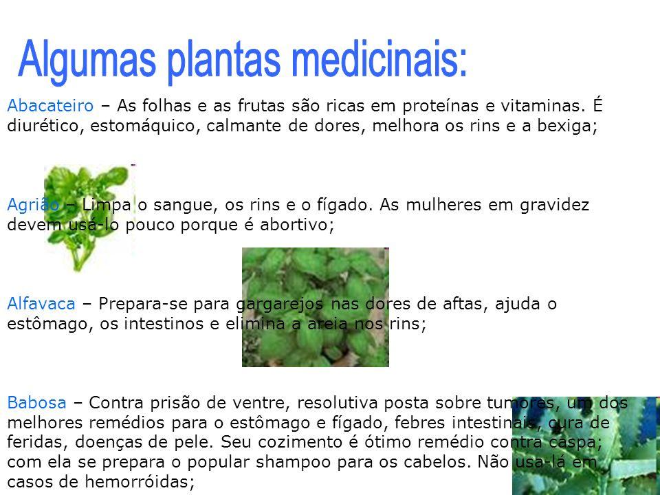 Algumas plantas medicinais: