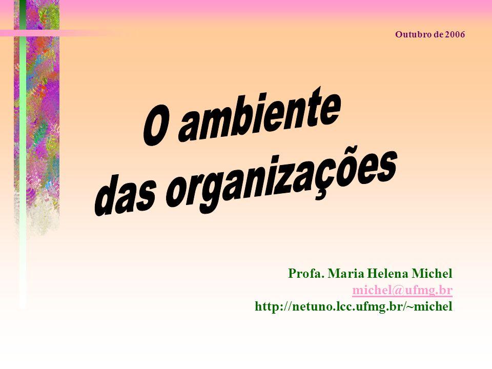 O ambiente das organizações Profa. Maria Helena Michel michel@ufmg.br