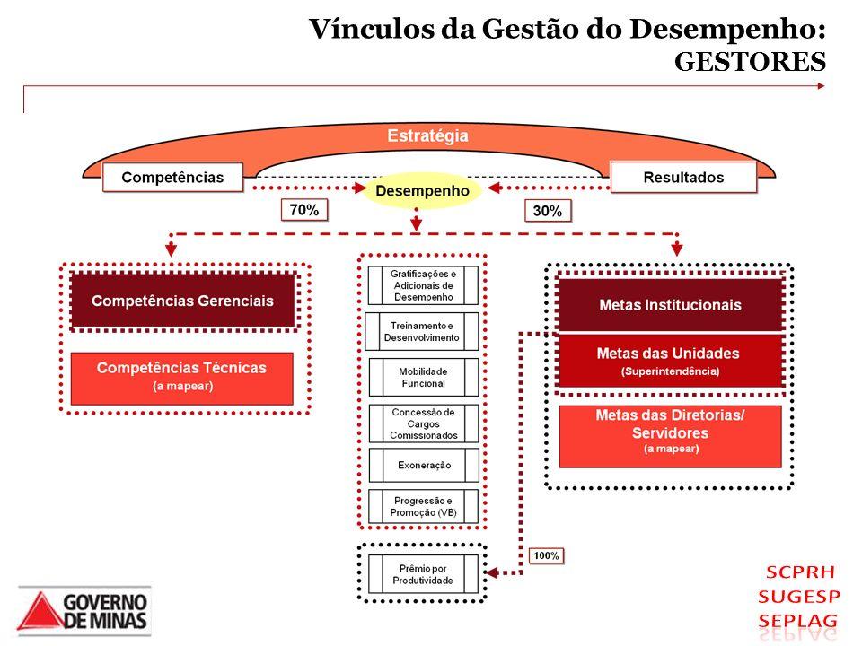 VÍNCULOS DA GESTÃO DO DESEMPENHO - GESTORES