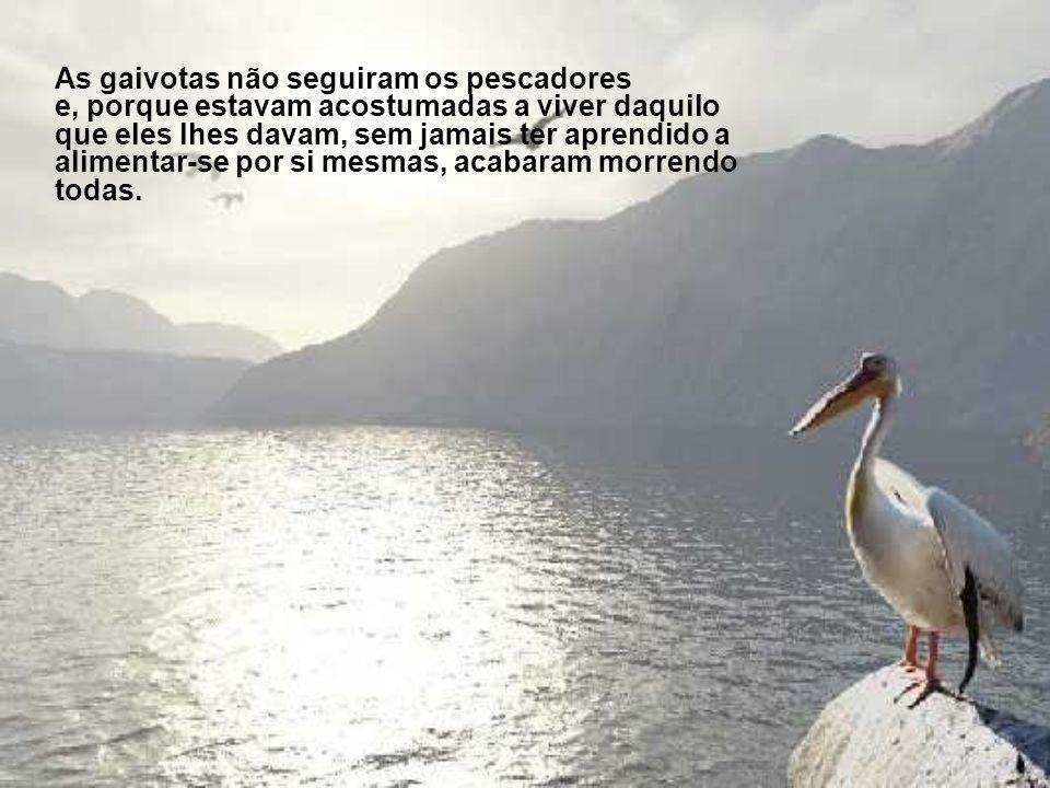 As gaivotas não seguiram os pescadores e, porque estavam acostumadas a viver daquilo que eles lhes davam, sem jamais ter aprendido a alimentar-se por si mesmas, acabaram morrendo todas.