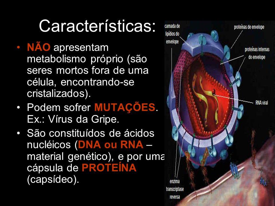 Características: NÃO apresentam metabolismo próprio (são seres mortos fora de uma célula, encontrando-se cristalizados).