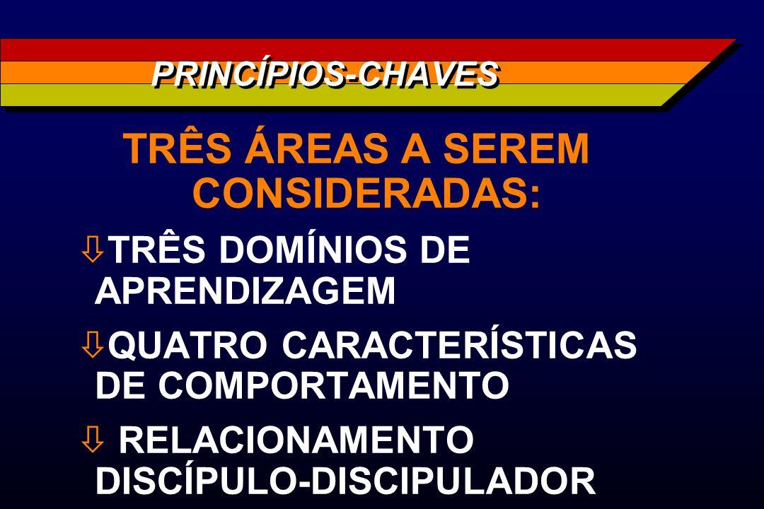 TRÊS ÁREAS A SEREM CONSIDERADAS: