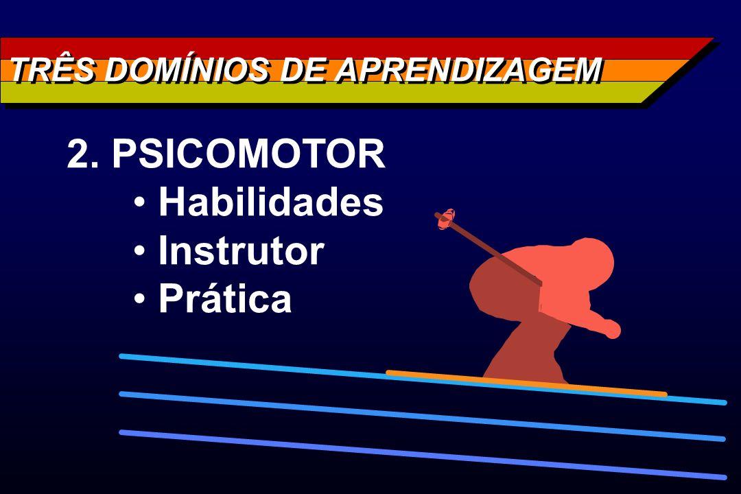 TRÊS DOMÍNIOS DE APRENDIZAGEM