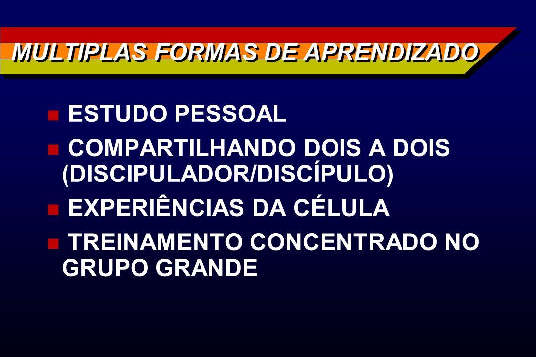 MULTIPLAS FORMAS DE APRENDIZADO