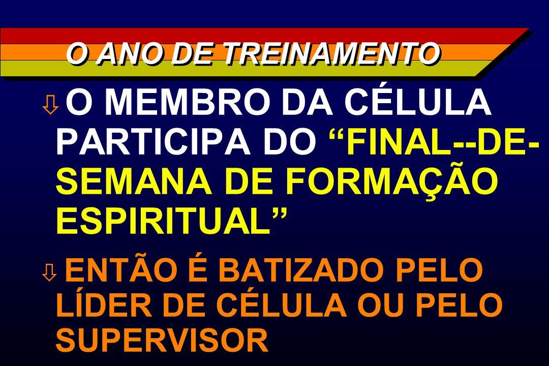 O ANO DE TREINAMENTO O MEMBRO DA CÉLULA PARTICIPA DO FINAL--DE-SEMANA DE FORMAÇÃO ESPIRITUAL