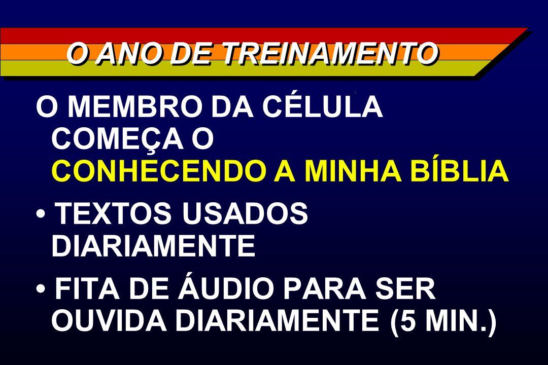 O ANO DE TREINAMENTO O MEMBRO DA CÉLULA COMEÇA O CONHECENDO A MINHA BÍBLIA. • TEXTOS USADOS DIARIAMENTE.
