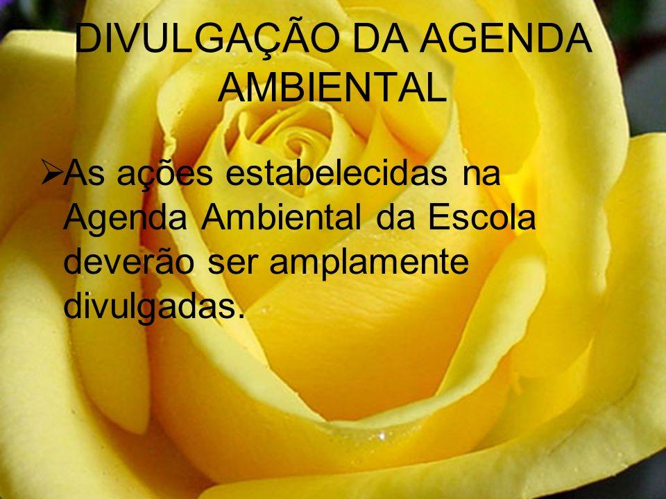 DIVULGAÇÃO DA AGENDA AMBIENTAL