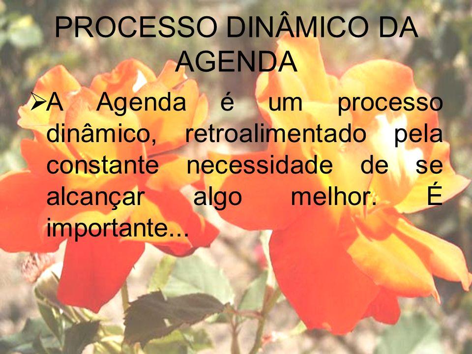 PROCESSO DINÂMICO DA AGENDA