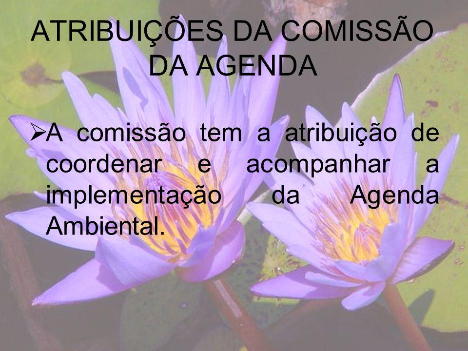 ATRIBUIÇÕES DA COMISSÃO DA AGENDA