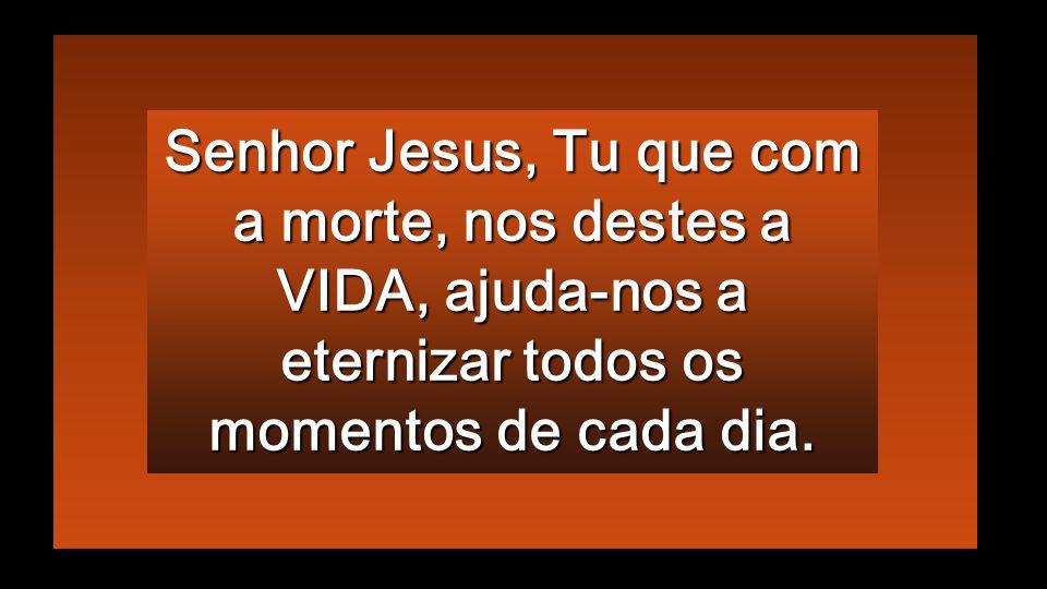 Senhor Jesus, Tu que com a morte, nos destes a VIDA, ajuda-nos a eternizar todos os momentos de cada dia.