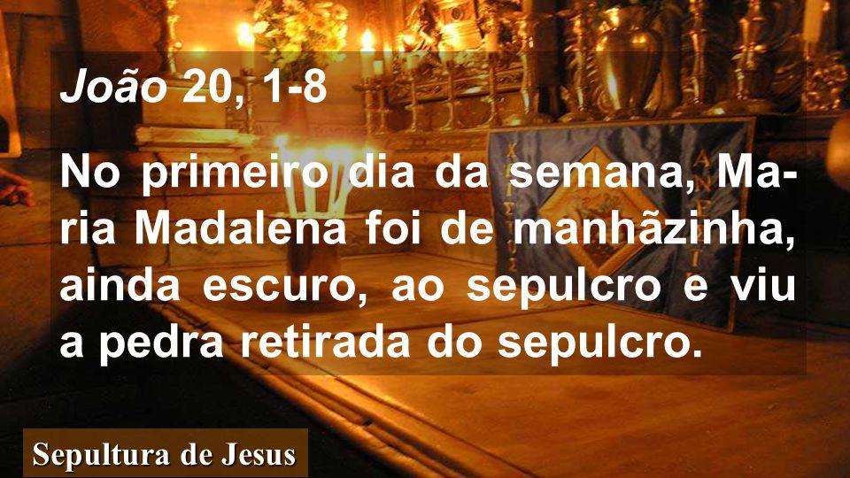 João 20, 1-8 No primeiro dia da semana, Ma-ria Madalena foi de manhãzinha, ainda escuro, ao sepulcro e viu a pedra retirada do sepulcro.