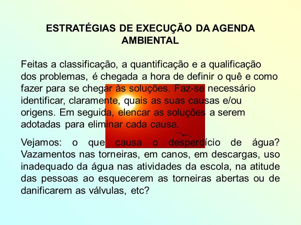 ESTRATÉGIAS DE EXECUÇÃO DA AGENDA AMBIENTAL