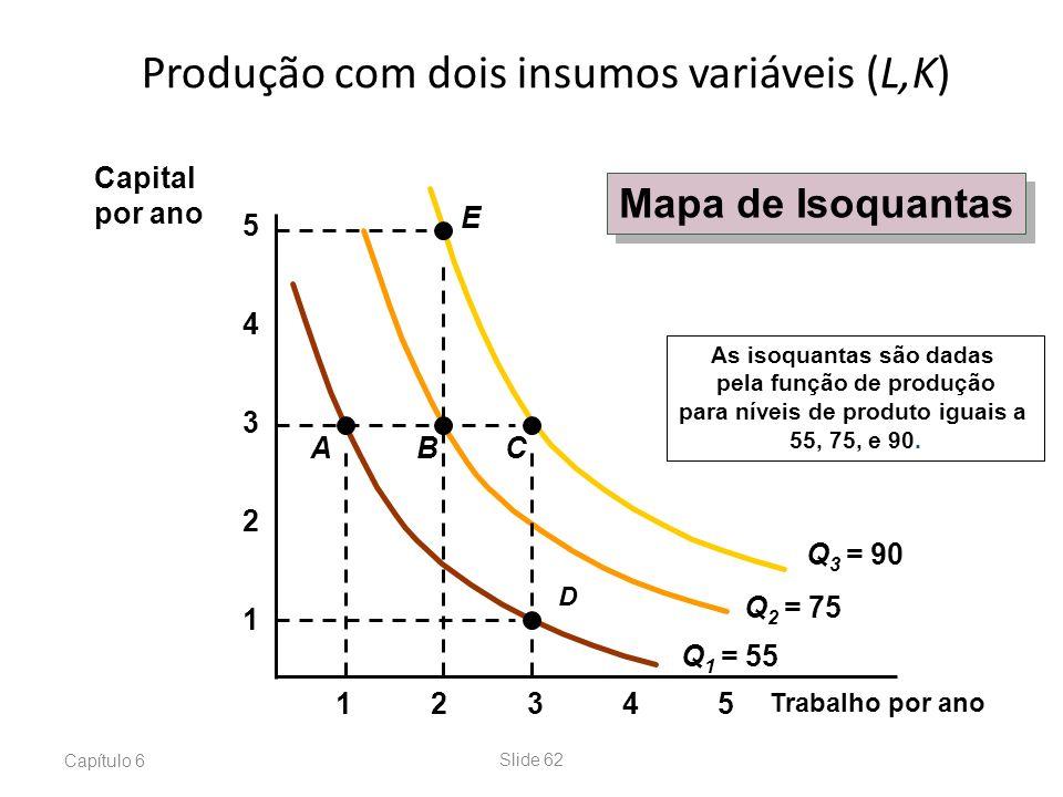 Produção com dois insumos variáveis (L,K)