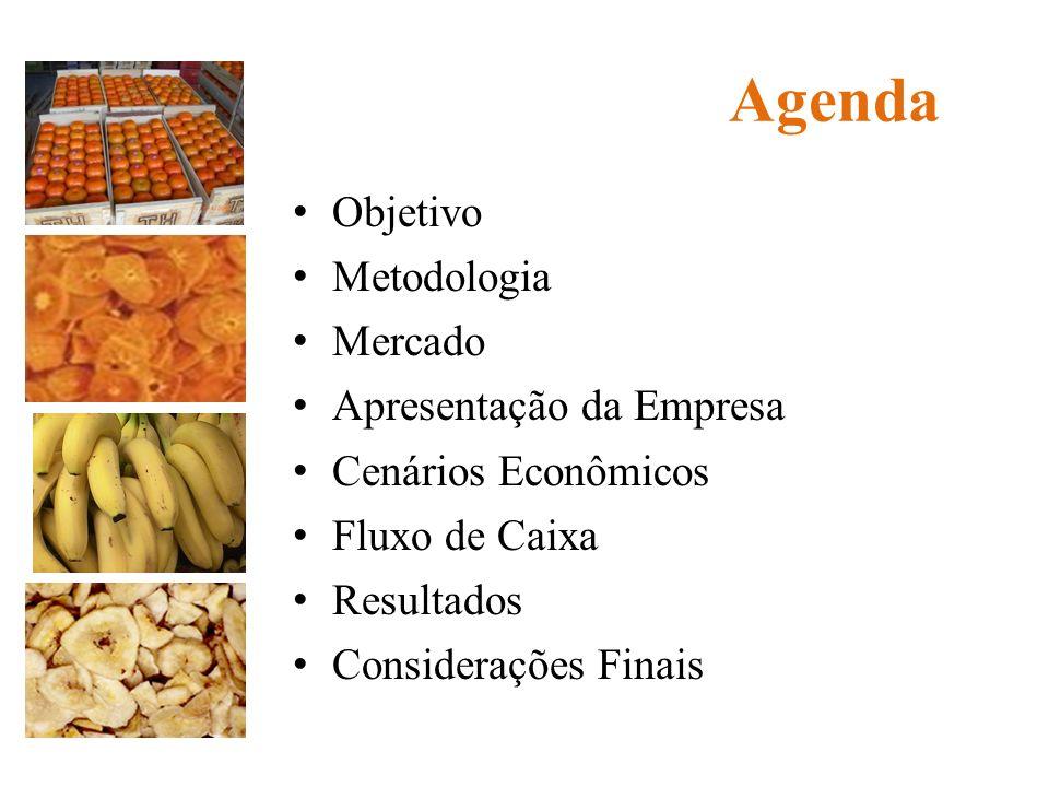 Agenda Objetivo Metodologia Mercado Apresentação da Empresa