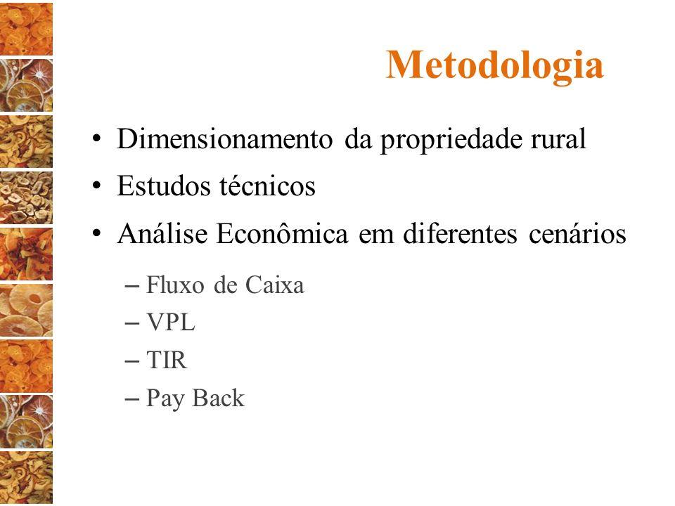 Metodologia Dimensionamento da propriedade rural Estudos técnicos