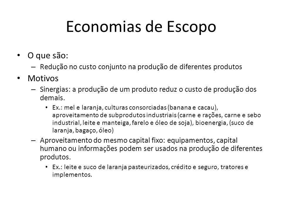 Economias de Escopo O que são: Motivos