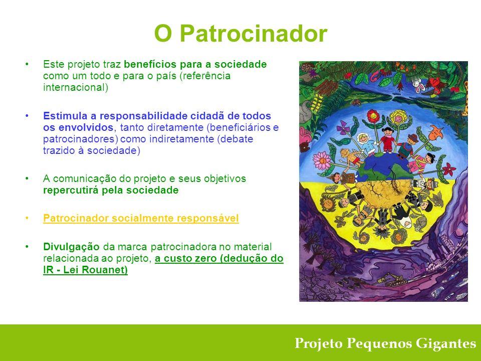 O Patrocinador Este projeto traz benefícios para a sociedade como um todo e para o país (referência internacional)