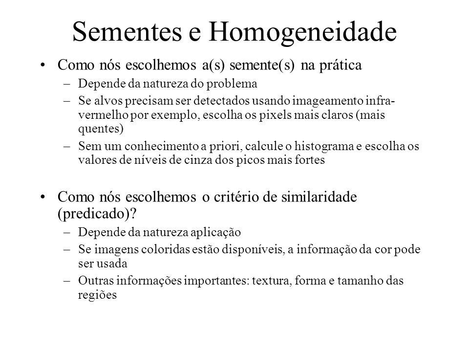 Sementes e Homogeneidade