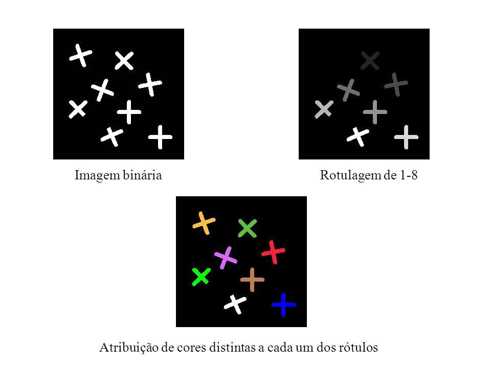 Imagem binária Rotulagem de 1-8 Atribuição de cores distintas a cada um dos rótulos