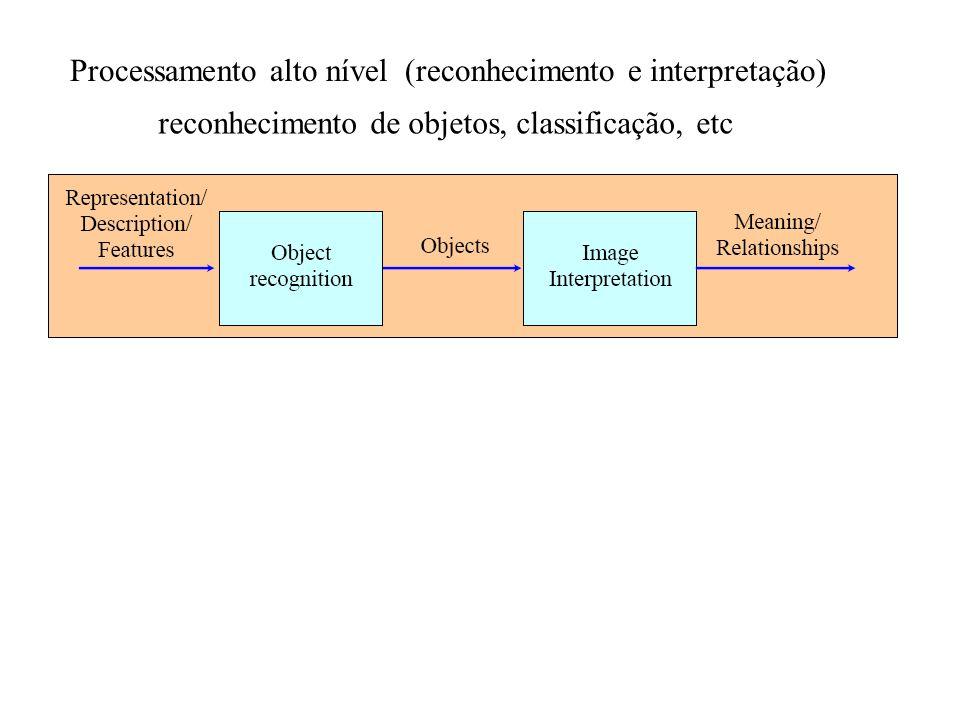 Processamento alto nível (reconhecimento e interpretação)