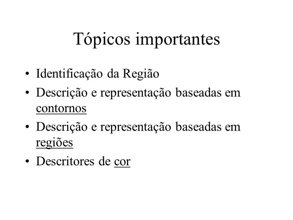 Tópicos importantes Identificação da Região