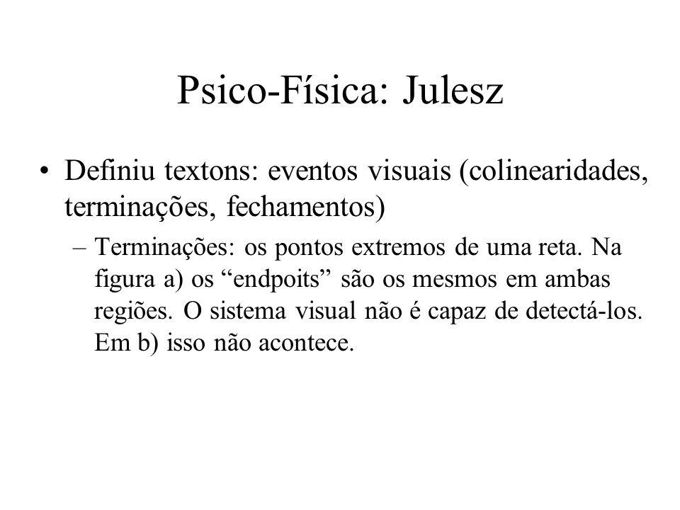 Psico-Física: Julesz Definiu textons: eventos visuais (colinearidades, terminações, fechamentos)