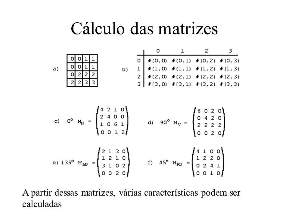 Cálculo das matrizes A partir dessas matrizes, várias características podem ser calculadas