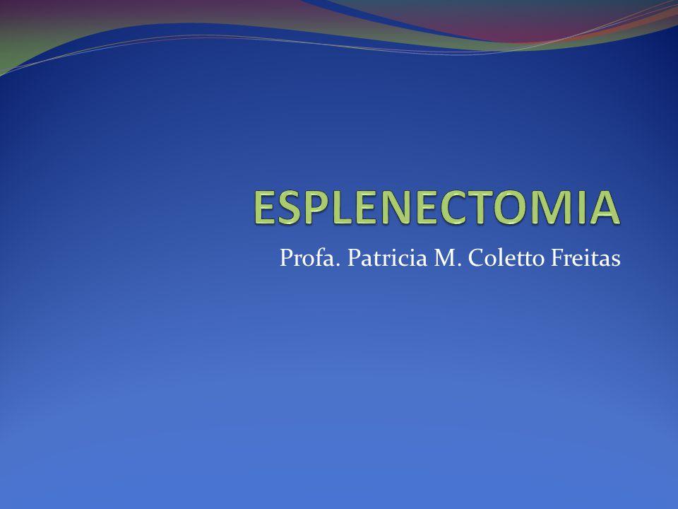 Profa. Patricia M. Coletto Freitas