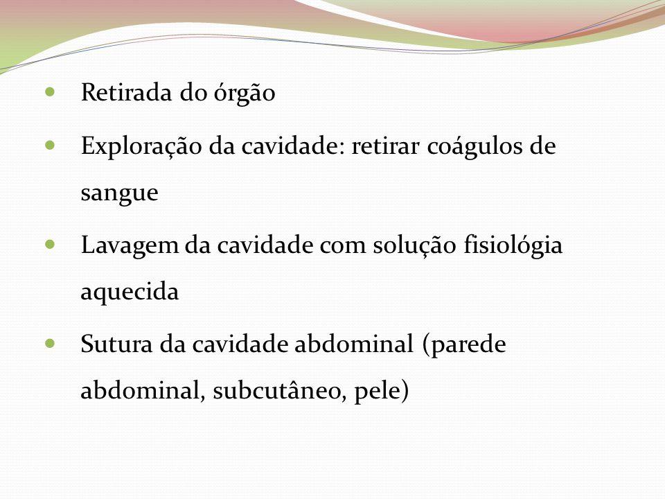 Retirada do órgão Exploração da cavidade: retirar coágulos de sangue. Lavagem da cavidade com solução fisiológia aquecida.
