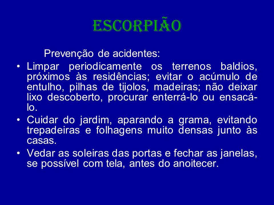 ESCORPIÃO Prevenção de acidentes: