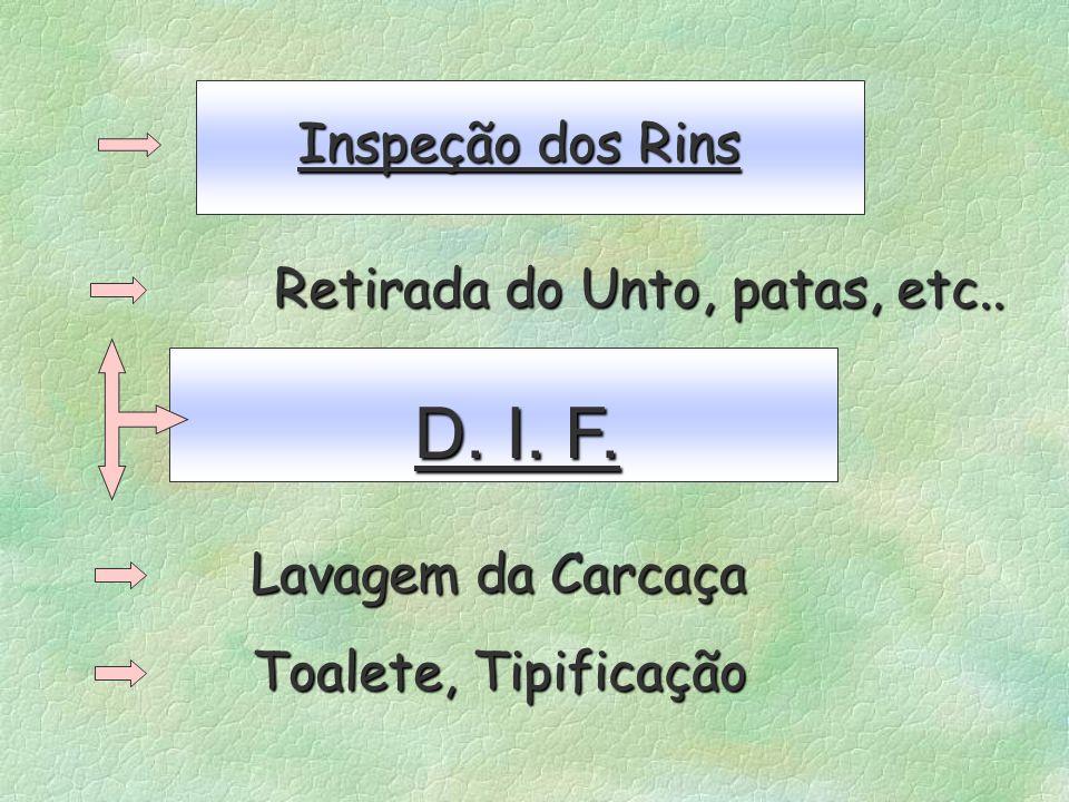 Inspeção dos Rins Retirada do Unto, patas, etc.. D. I. F. Lavagem da Carcaça Toalete, Tipificação