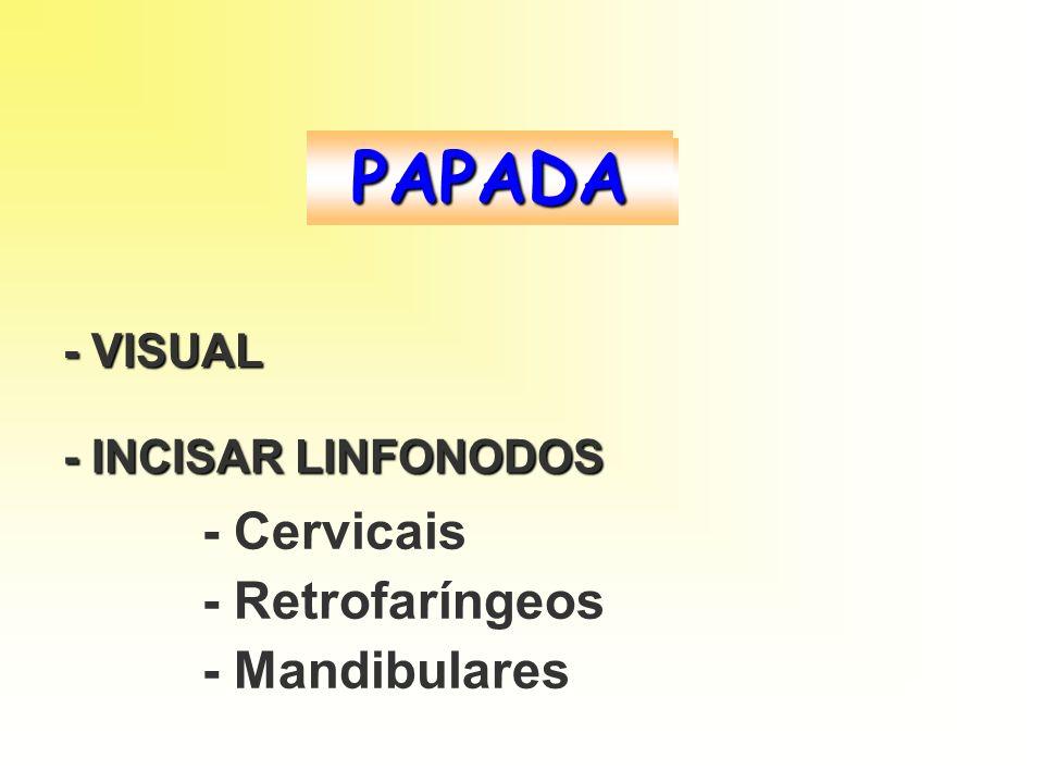 PAPADA - Cervicais - Retrofaríngeos - Mandibulares - VISUAL
